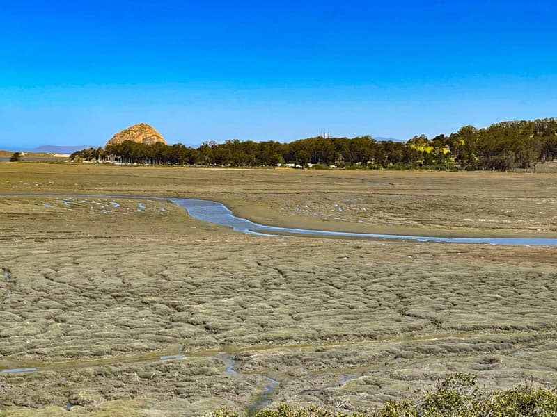 A view of the salt marsh and Morro Bay from Los Osos CA