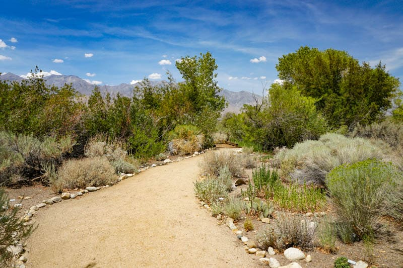 Dehy Park Trail in Independence, CA