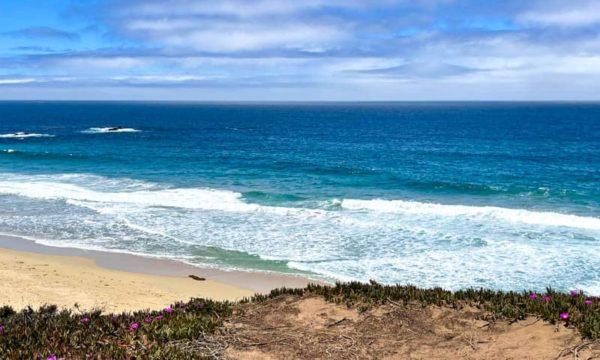 15 Must-Visit Monterey Beaches (+ Map)!