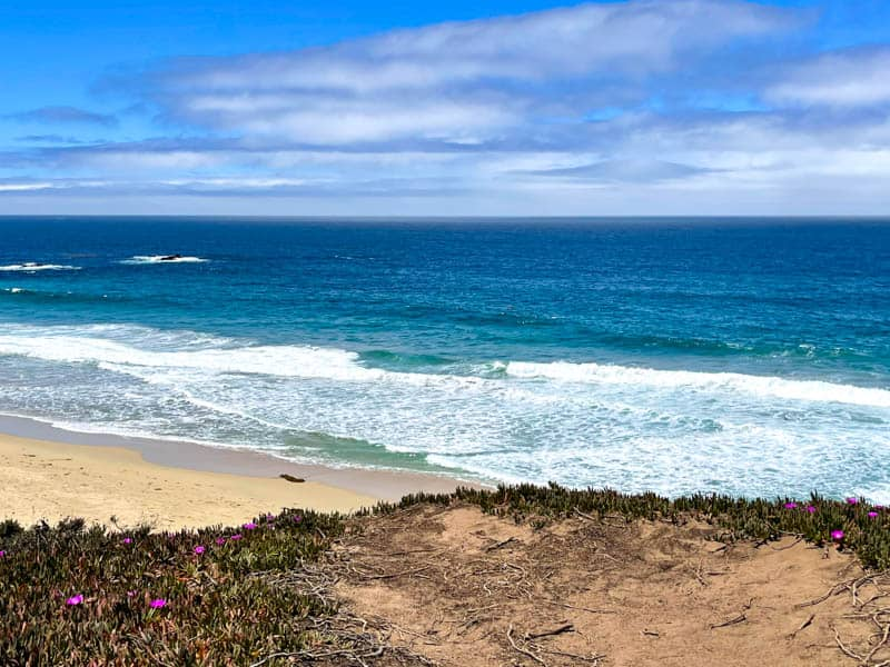 Garrapata B each is one of the best beaches in Monterey County, California