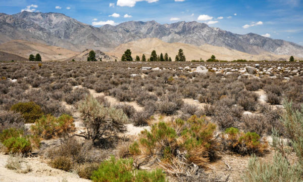 9 Fun Things to Do in Independence, California