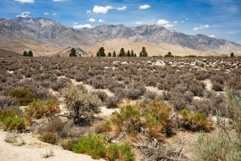 Independence California, offers both natural beauty and history