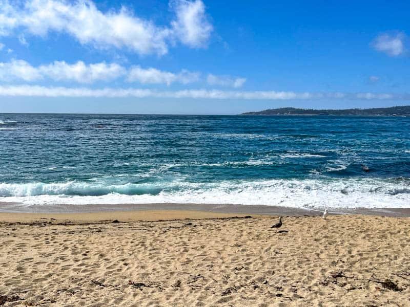 Monastery Beach along CA1 in California