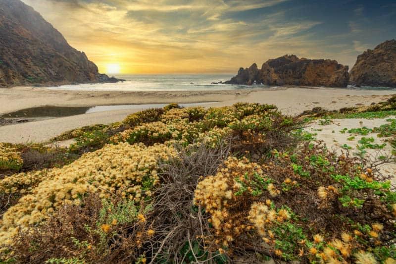 Beautiful Pfeiffer Beach in Big Sur, California