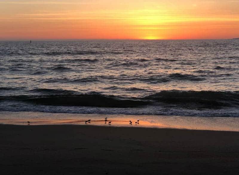 Salinas River State Beach in Moss Landing, California