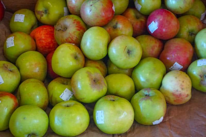 Gravenstein apples at the Community Market at the Barlow in Sebastopol, CA