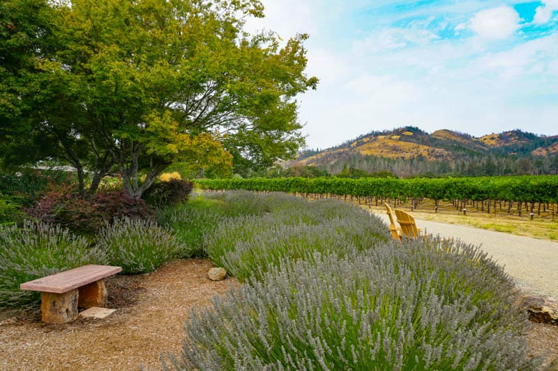 Saint Francis Winery in Sonoma County, CA