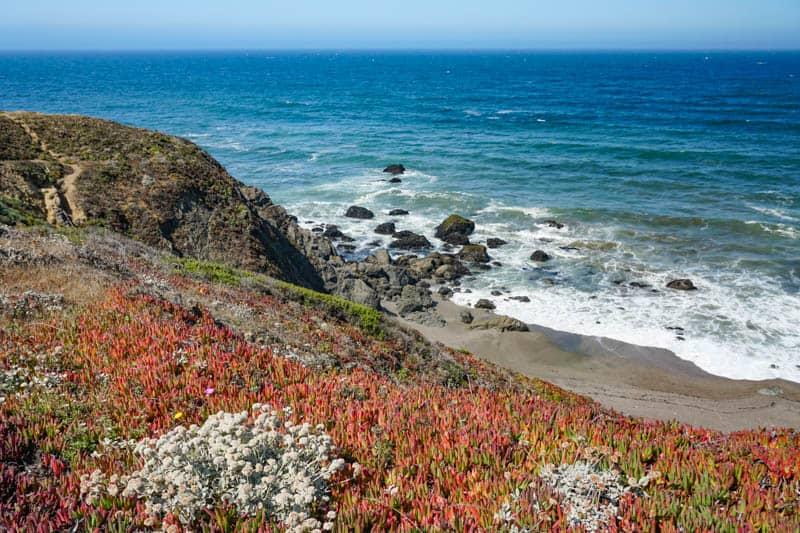 Sonoma Coast Park offers stunning views of the ocean