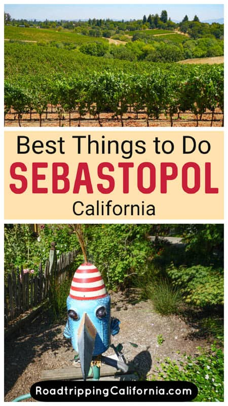 Discover the best things to do in Sebastopol, California! The charming wine country town in Sonoma County offers art, shopping, and great food and drink!