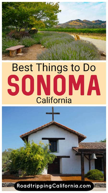 Discover the best things to do in Sonoma, California! From world class wine and farm to table cuisine to historical sights and great shopping, you will find lots to do in this California wine country destination!