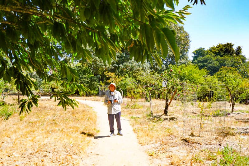 Touring the Luther Burbank Experiment Farm in Sebastopol, CA