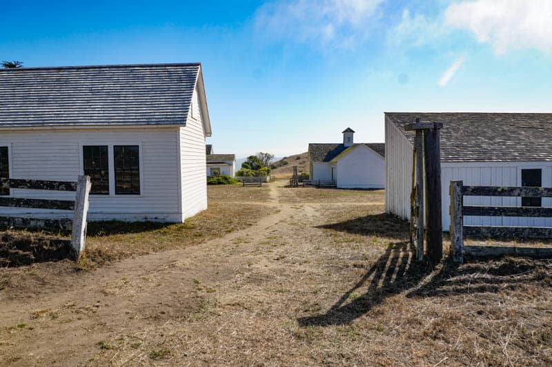 Exploring Pierce Point Ranch at Tomales Point in Point Reyes, CA