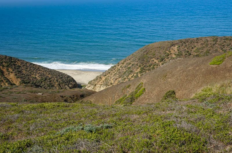 Stunning ocean view along Tomales Point Trail in Point Reyes