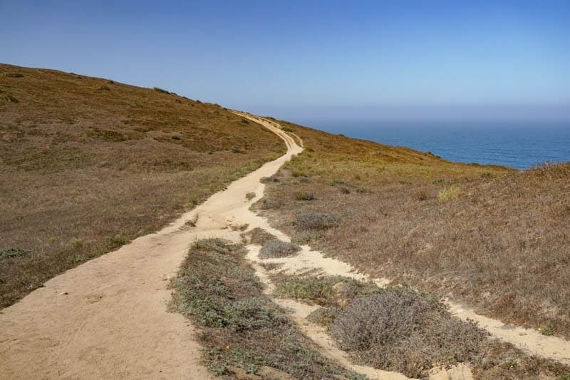 Tomales Point Trail in Point Reyes National Seashore CA