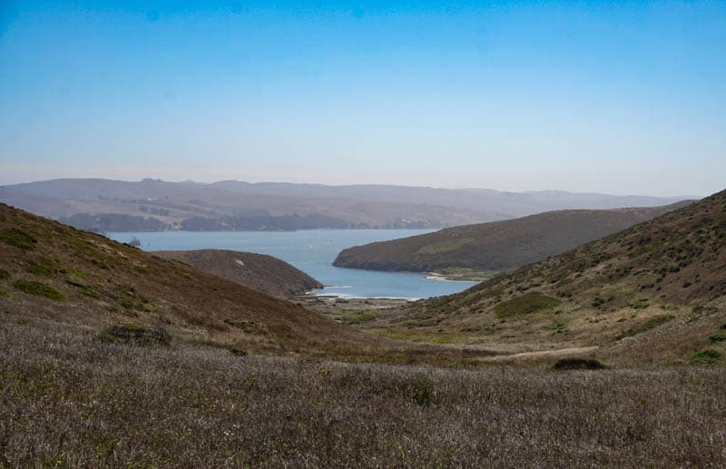 A view of Tomales Bay from Tomales Point Trail