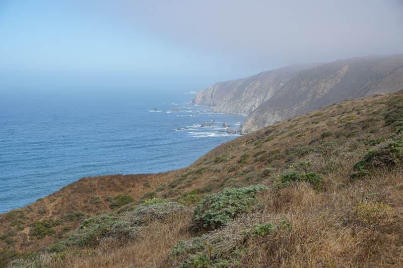 Tomales Point Point Reyes Peninsula California