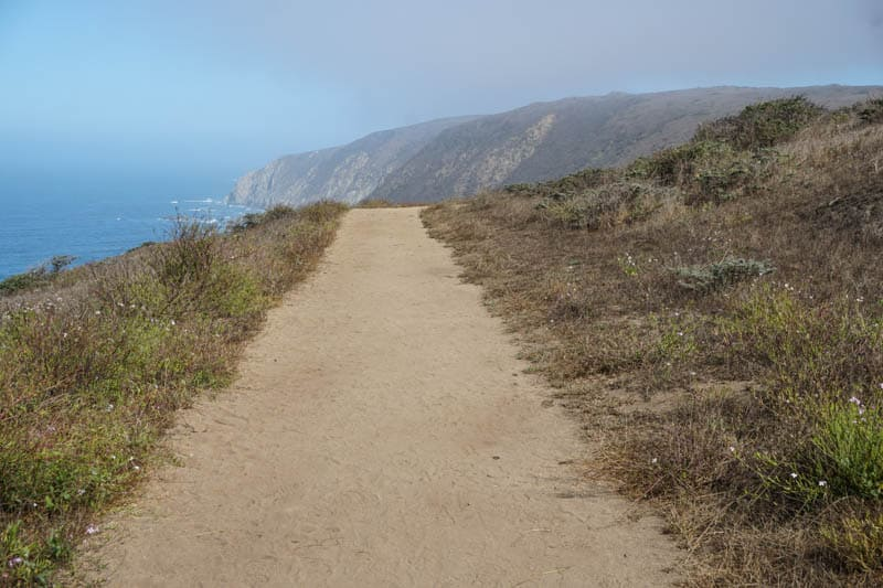 Tomales Point Trail in Point Reyes is an exposed trail